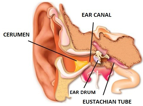 How to get water out of your ear solution for blocked ear top ear wax is produced in the ear canal and is called cerumen it actually has a purpose which is to protect your ear from foreign objects dust solutioingenieria Choice Image